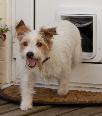 Pet Door Installation Unique Dog Doors Petfencekc