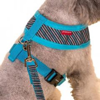 Vest Leashes - Dog Harness Leash