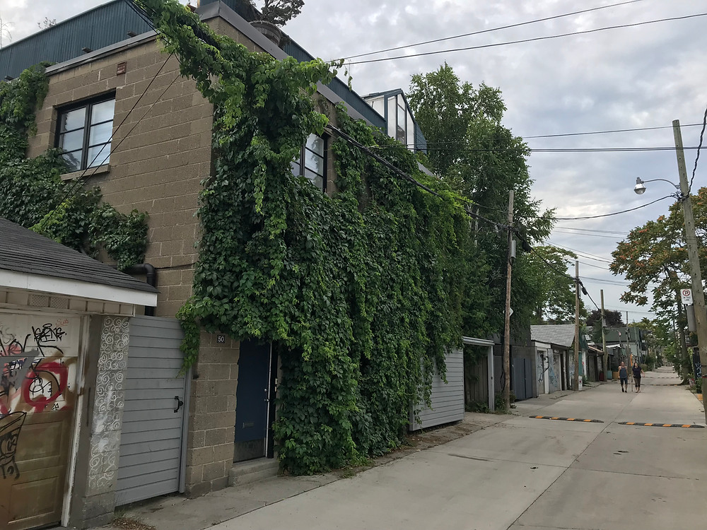 Example of a laneway home covered in greenery