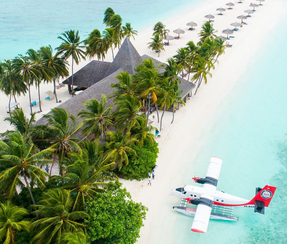 beach destination with water plane