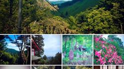 【御岳山】1泊2日ヨガ・マインドフルネスリトリート