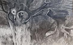 pennell broken oak 4.jpg