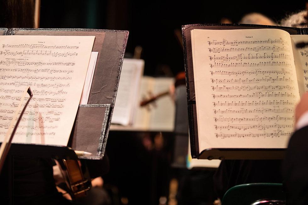 Orchestra_024.jpg