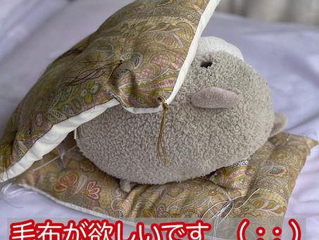 毛布の掛ける順序^_^