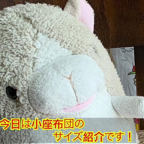当店人気の小座布団(^ ^)