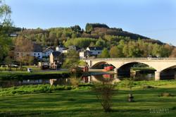 village avec pont et arbres
