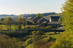 Rochehaut village au soleil et arbre