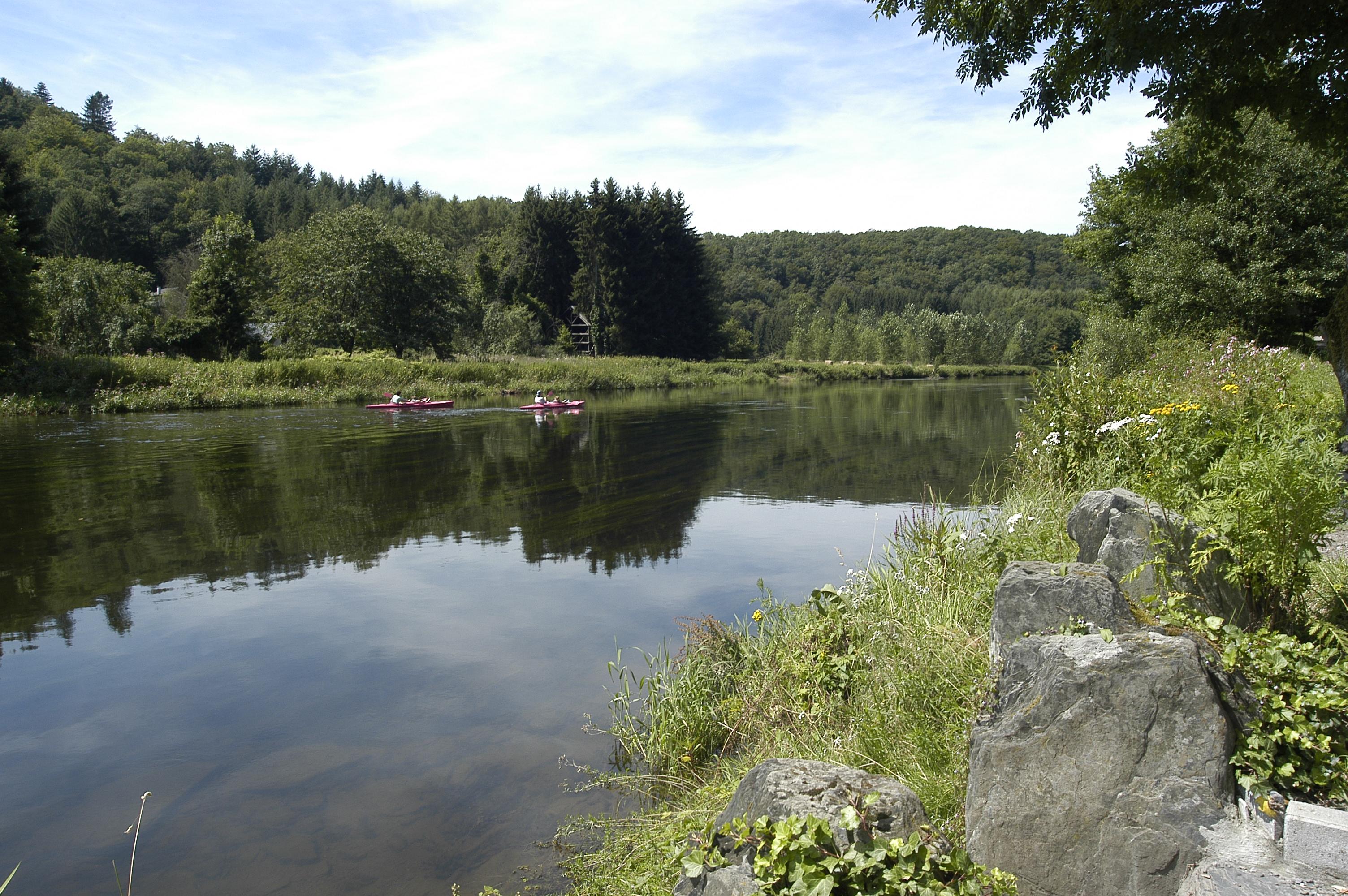 kayaks sur l'eau et arbres