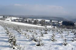 hameau les hayons sous la neige