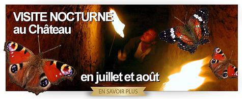 Visite_nocturne_été.png