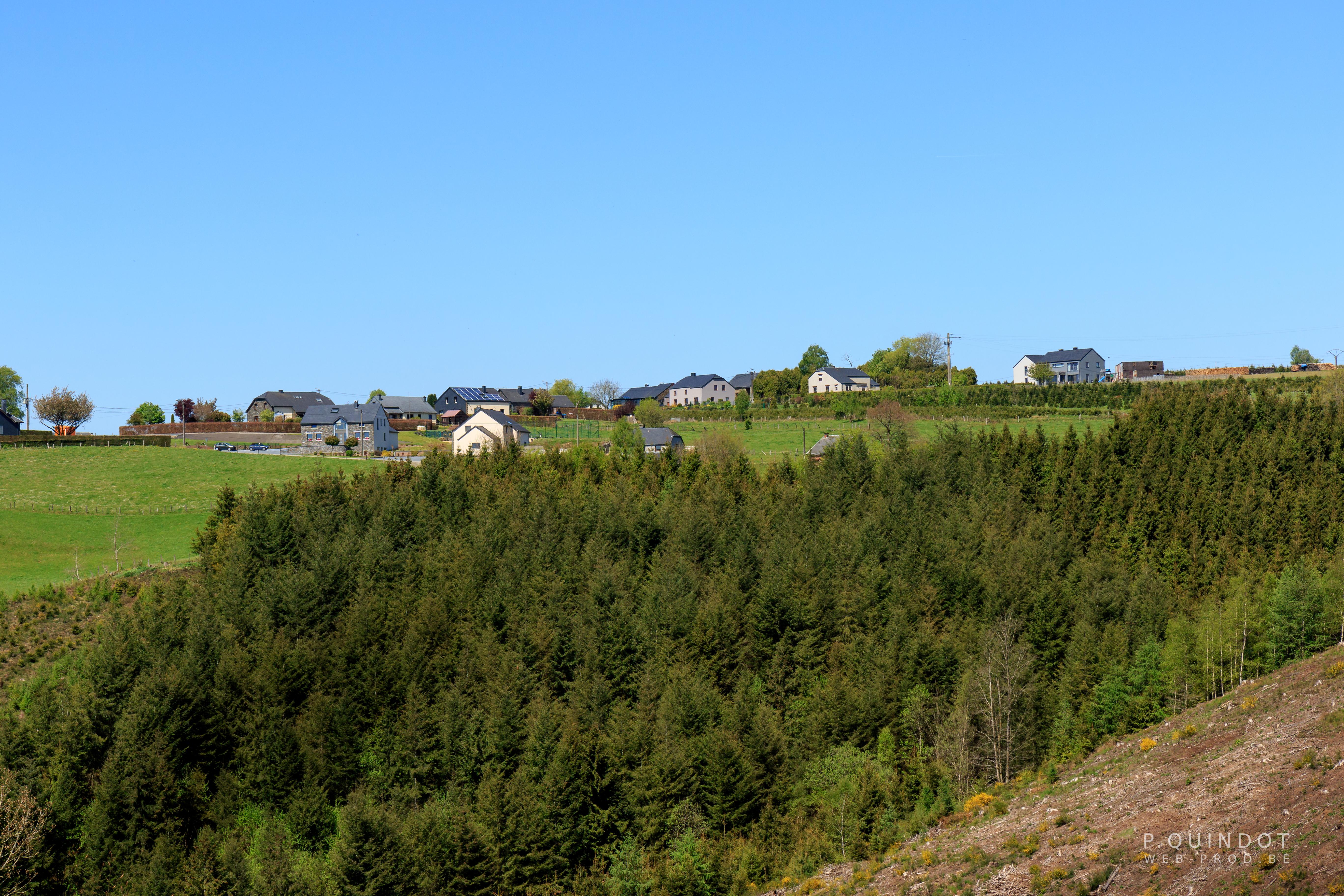 village avec champs et arbre