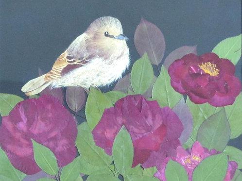 Bird on a rose bush