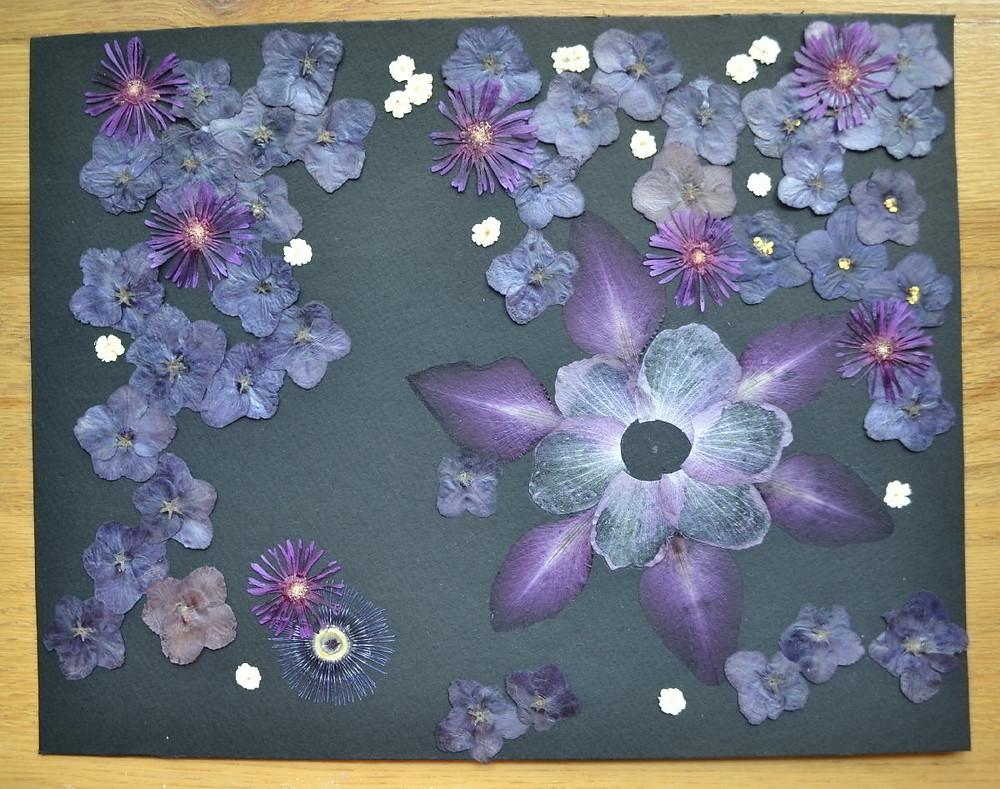 Petals of gladiolus' flowers, petals of rose of Sharon flowers; flowers of African violet,  flowers of delosperma, part of the flower of passion vine, flowers of spirea.