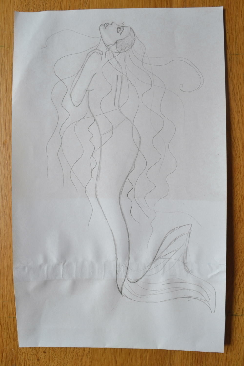 "The sketch for the Pressed Plant Art ""Mermaid""."