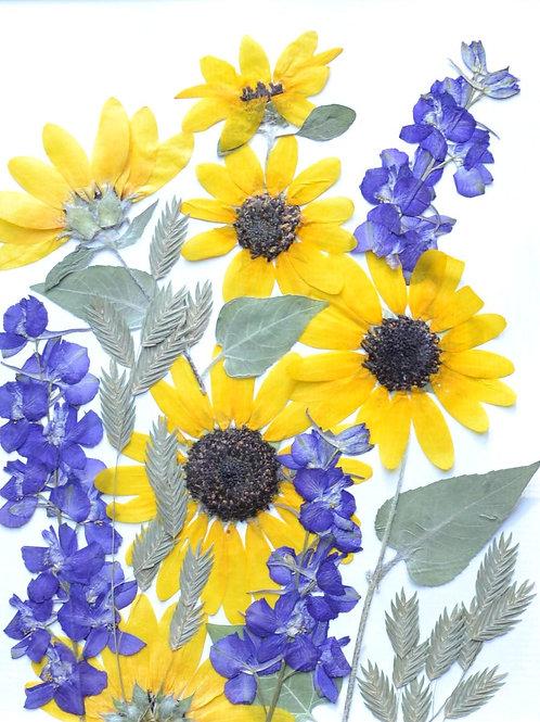 Plant composition