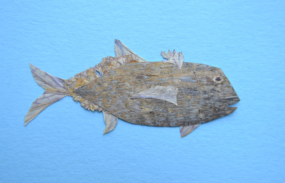 Fish for Pressed Plant Collage is made of dried under press leaves of Cale, a petal of Tiger Lily, and tree bark