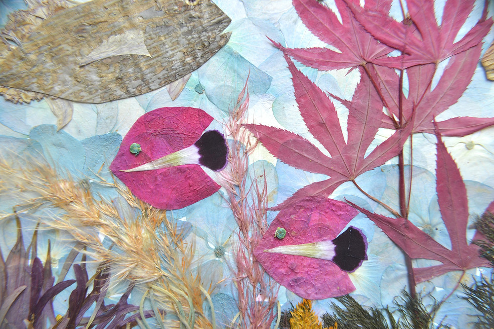 Dried under press petals of Dianthus and Bougainvillea imitate a school of fish in the ocean on the Pressed Plant Collage
