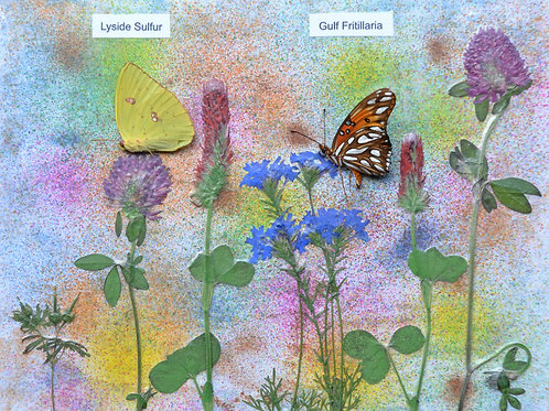Wild flowers with butterflies #1