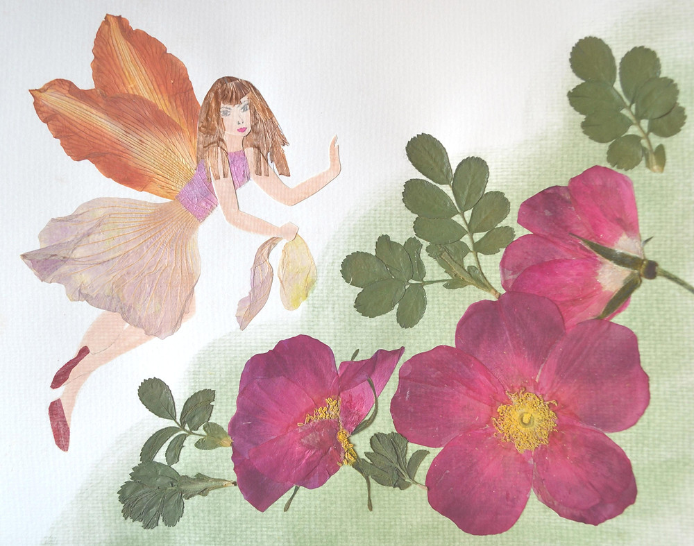 """Pressed Plant Art """"Fairy"""".  A beautiful Fairy is flying above blooming Rose Rugosa bush."""