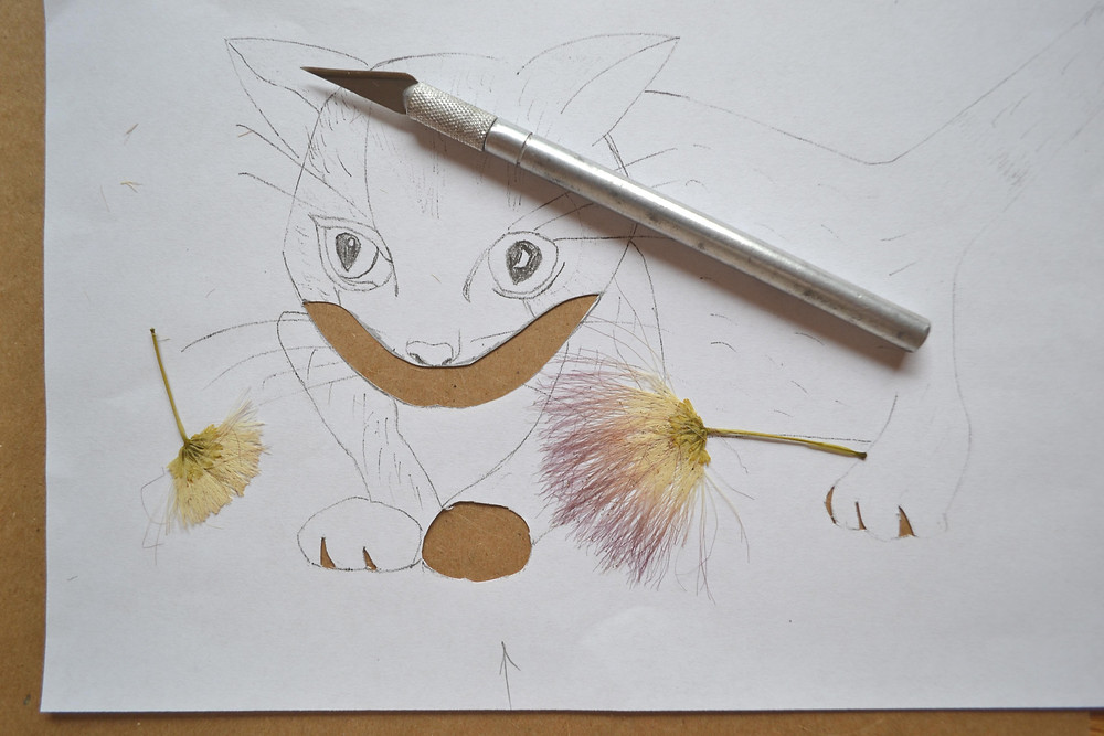 The sketch of image of cat for the Pressed Plant Art with two dried blooms of the Silk tree.