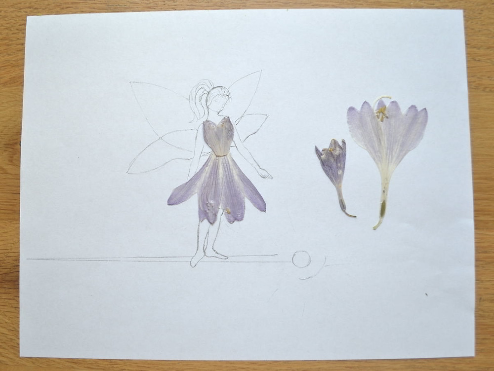 """The sketch of the Pressed Plant Art """"Space Fairy"""" and two flowers of hosta in lilac color."""