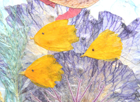 How to create fish and jellyfish for Pressed Plant Collage. Part 1.