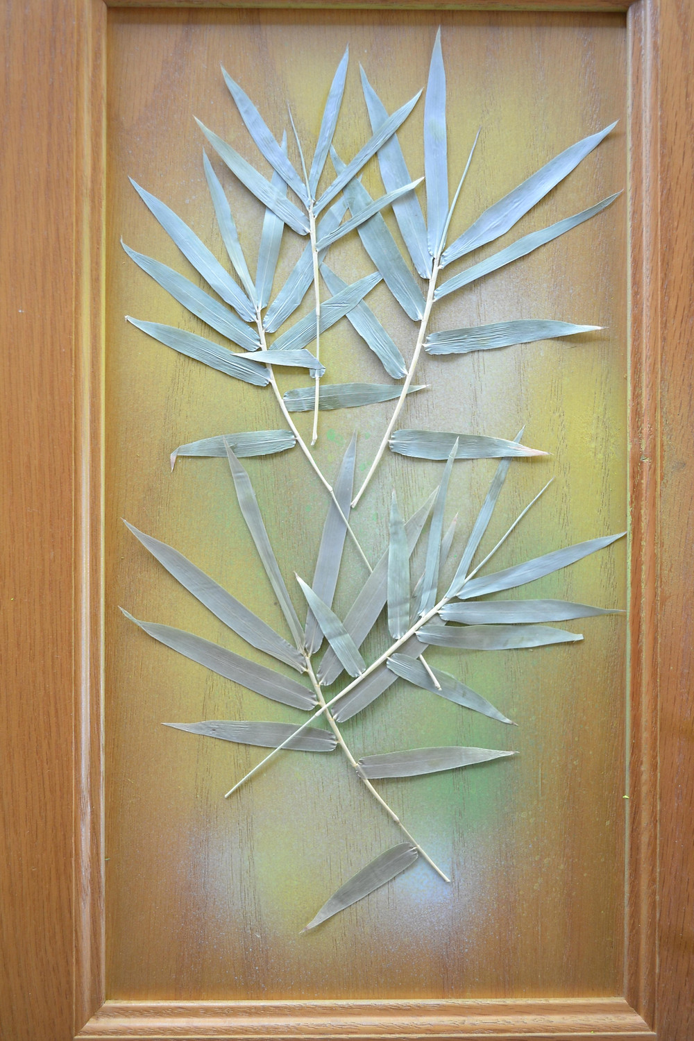 A door of a wooden cabinet with dried pressed plant of Bamboo. Pressed Flower Craft.