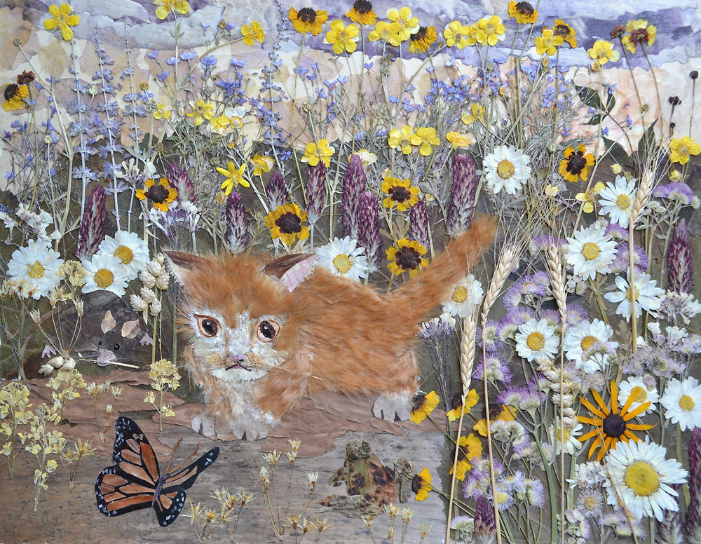 """Original Pressed Plant Art """"What a beauty!"""" Twilights. Summer meadow is in blossom. On the road near meadow there are four creatures: a red pussycat, a butterfly, a frog and a rat. A red pussycat is looking at beautiful butterfly, but not at a rat and a frog."""
