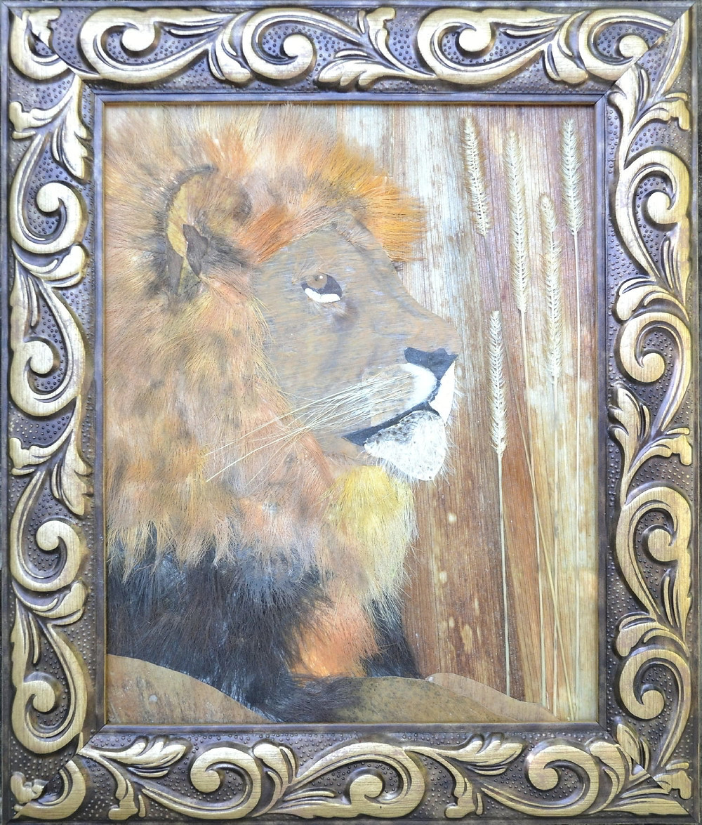 """Original Pressed plant Art """"Lion"""". A relaxing lion is lying on the ground."""