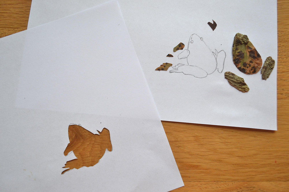 Stencil of the figure of the frog for Pressed Plant Collage. Details of the figure of the frog are made of Eggplant and grapes leaves.