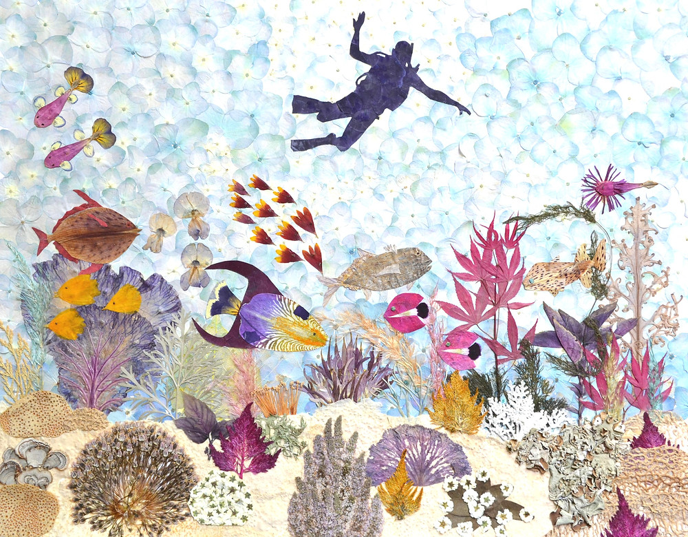 "Pressed Plant Art ""Diver"". A beautiful seascape with different corrals, plants and sea creatures. A diver is approaching the seafloor."