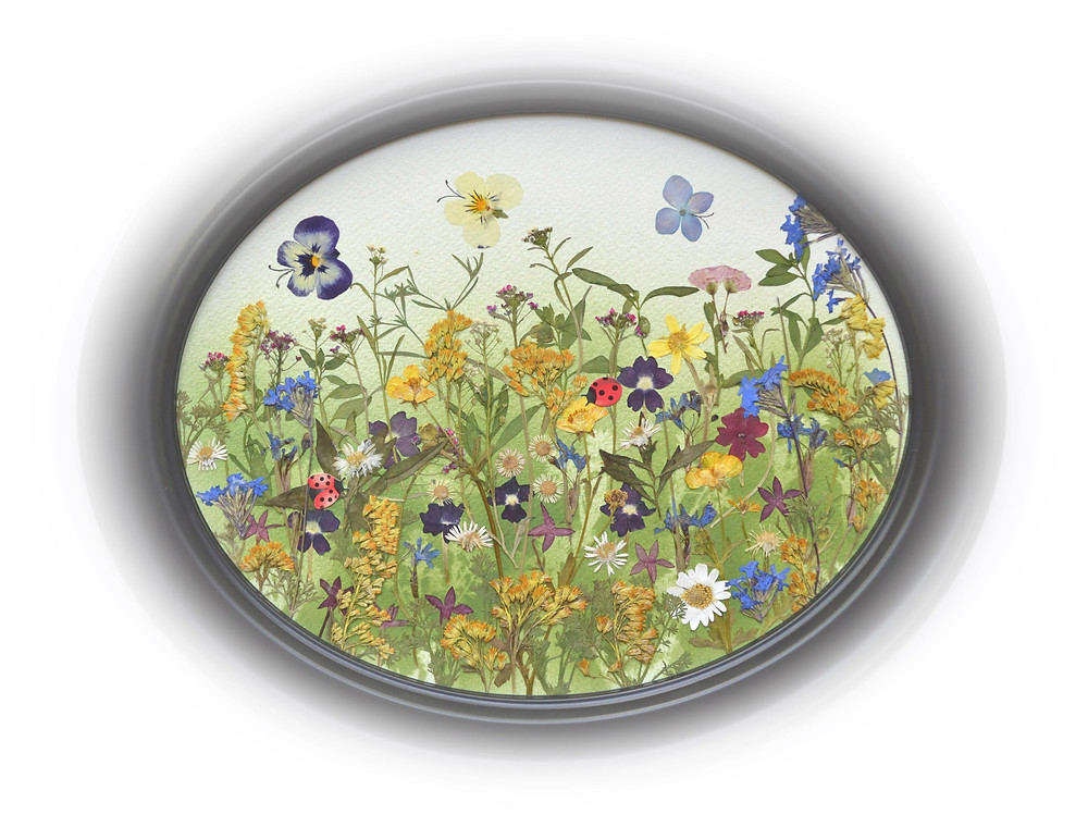 """Pressed Plant Art """"Summer Meadow"""". A wonderful flowering meadow. Different butterflies are flying above the meadow."""