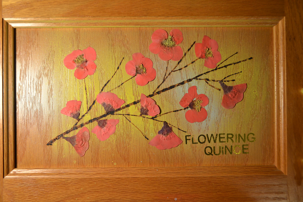 A door of a wooden cabinet with image of flowering branch of Flowering Quince made of Pressed Flowers. Pressed Flower Craft.