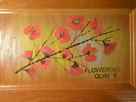 Pressed Flower Crafts on furniture.
