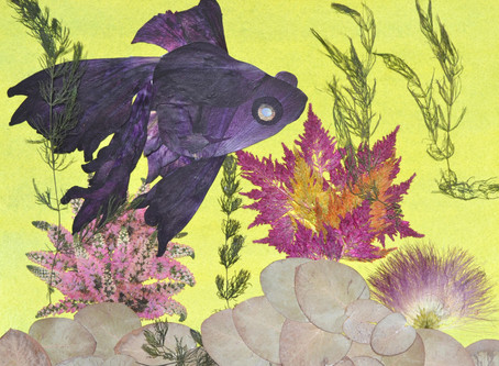 How to create fish Telescope on the Pressed Plant Art.