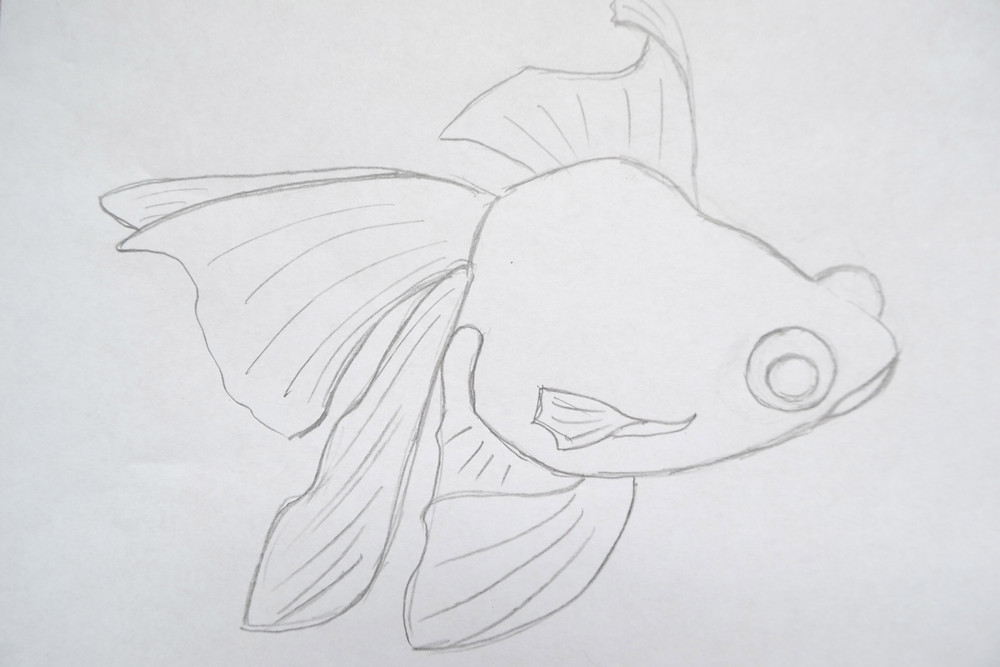 The sketch for the fish Telescope for the Pressed Plant Art.