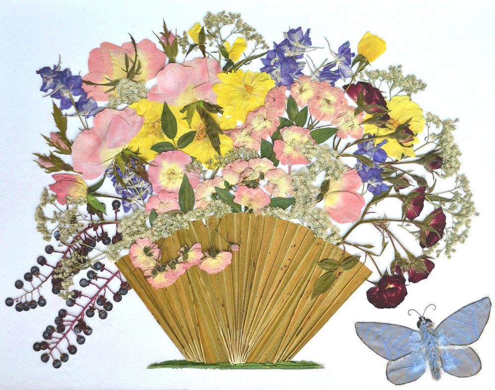 """Pressed Plant Art """"Basket with flowers""""  Pink, yellow and dark-red roses, some berries are in a basket standing on the grass. One blue butterfly is near the basket."""