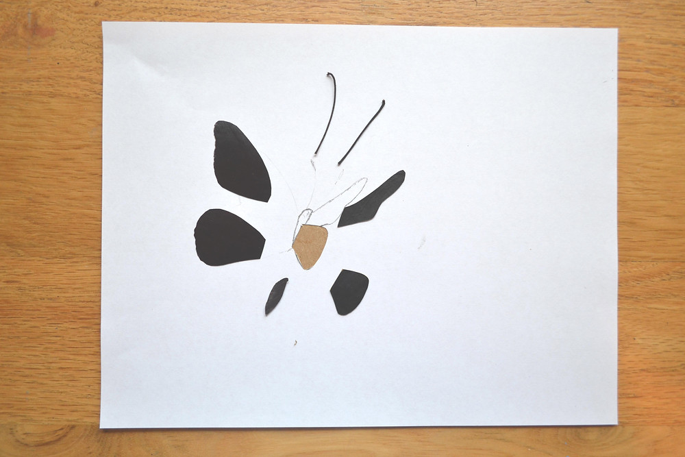 Stencil for wings of a butterfly for the Pressed Plant Art. Wings of a butterfly are made of dried under the press skin of Eggplant.