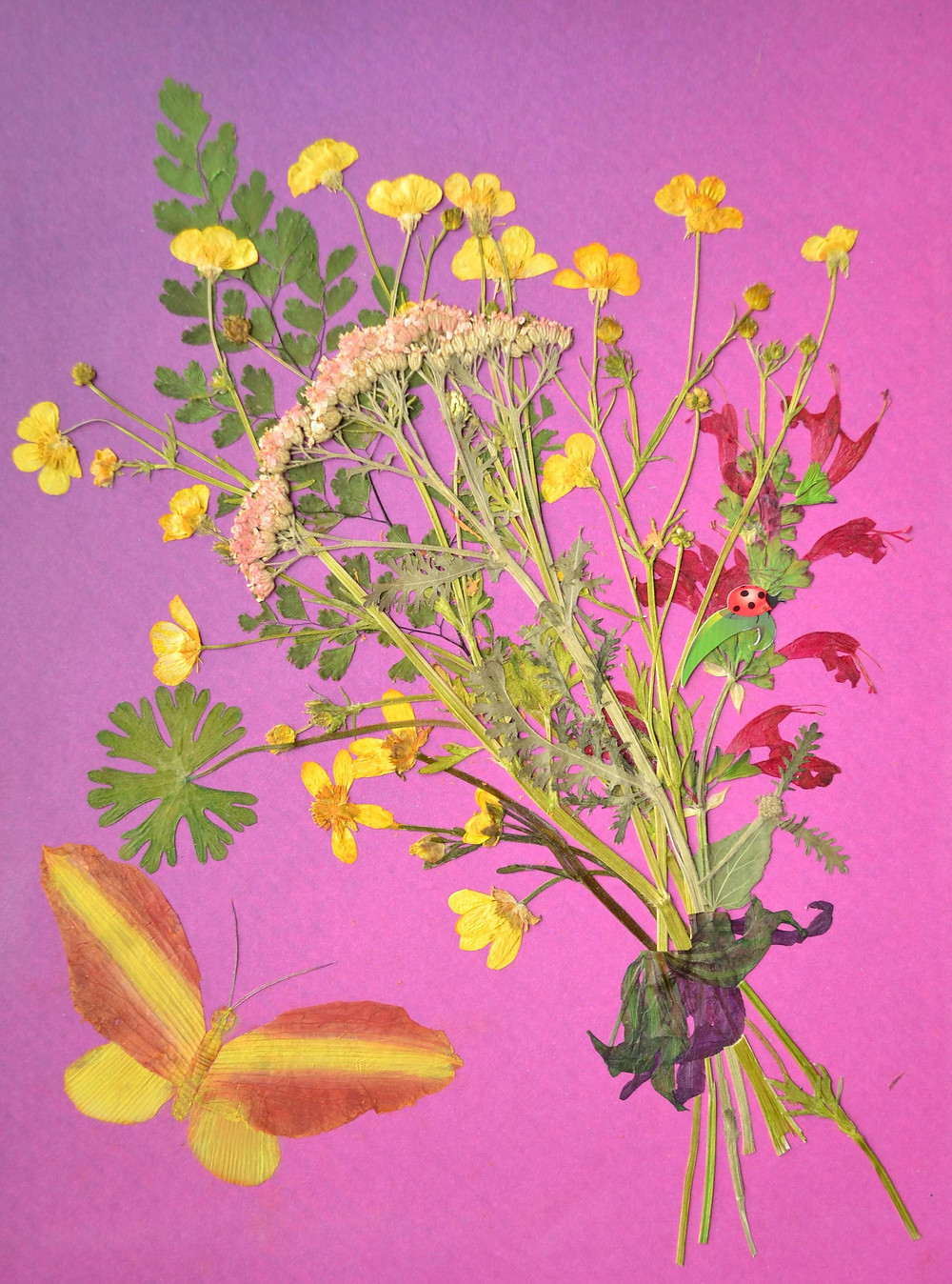 """Pressed Plant Art """"Bouquet with a butterfly"""" Yarrow flowers, salvia flowers are in a bouquet and there are one butterfly and one Lady Bag."""