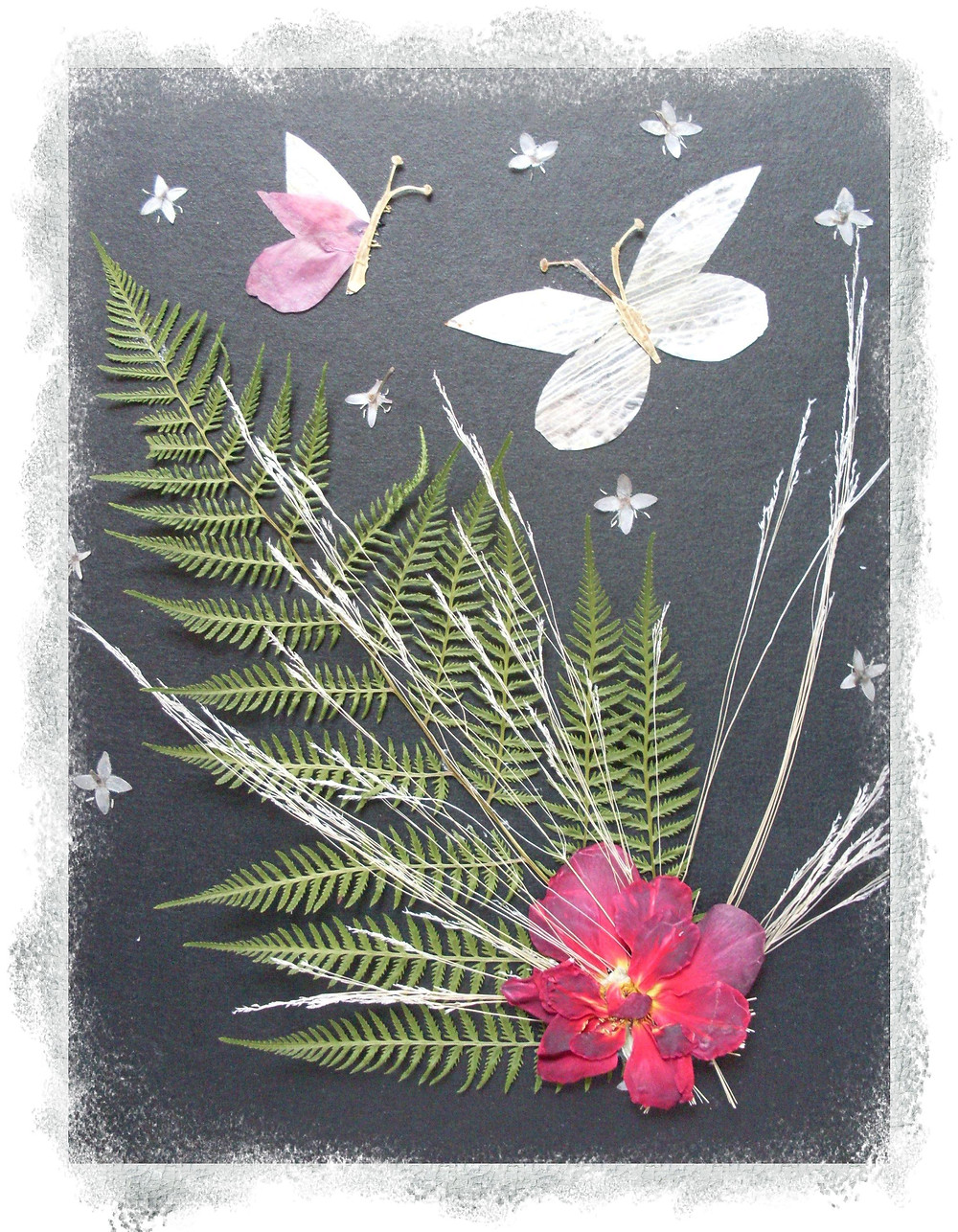 """Pressed Plant Art """"The blooming of the fern"""" It's the night. Fern is blooming. It has a bright red shiny flower. The light from fern flower is attracting butterflies. The stars are in the sky."""