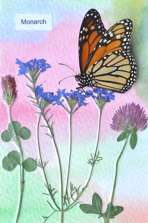 Wild flowers with butterfly #3