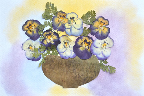 Pansies in a pottery pot.