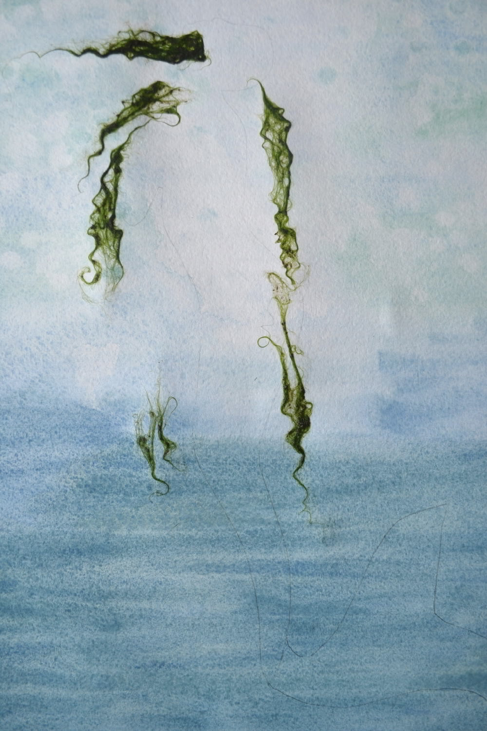 "The green slime on the background of Pressed Plant Art ""Mermaid"" is Imitating the green heir of Mermaid."