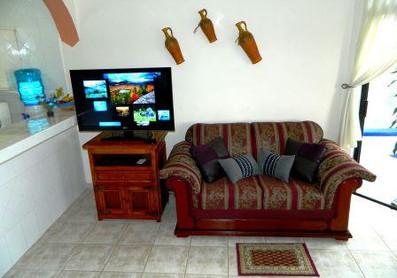 tv and love seat.jpg