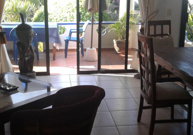 View from kitchen area to garden terrace