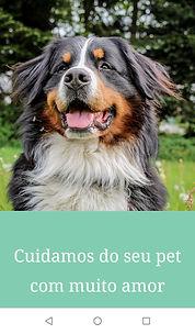 Camila Pets