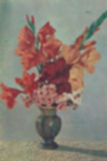Scanned Image 1_edited.jpg