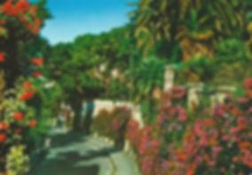 Scanned Image 14.jpg