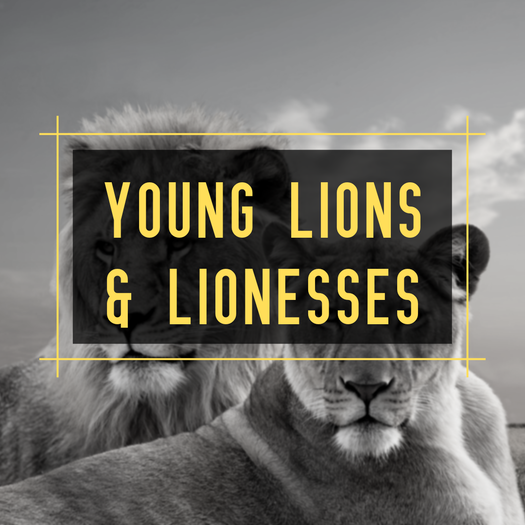 Young Lions & Lionesses