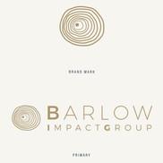 Barlow Impact Group Brand